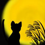 教えて猫先生!「中秋の名月」を正しく「ねこる」方法♪