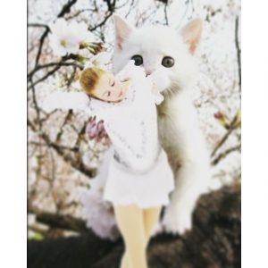 銀盤を彩る猫たち♪ フィギュアスケート界の個性的な「キャッツ」