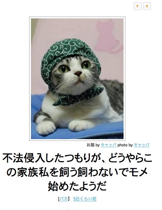 【ボケて(bokete)傑作選】「ボケて」の面白猫ネタを選りすぐってみました!