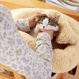 飼い主さんの声を反映 PEPPYからアイデア猫グッズ発売