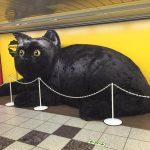 話題沸騰!新宿駅に謎の巨大猫あらわる!