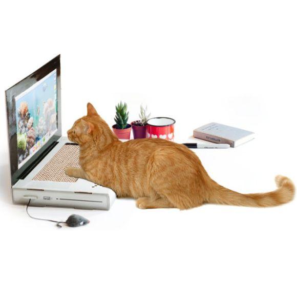 ついにネコにも必要!? パソコン型の爪とぎがあった!