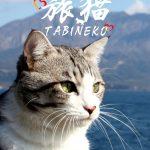 【ニャン吉ファン注目!】旅猫ニャン吉に会えるかも♡横浜赤レンガ倉庫 ねこ写真展開催
