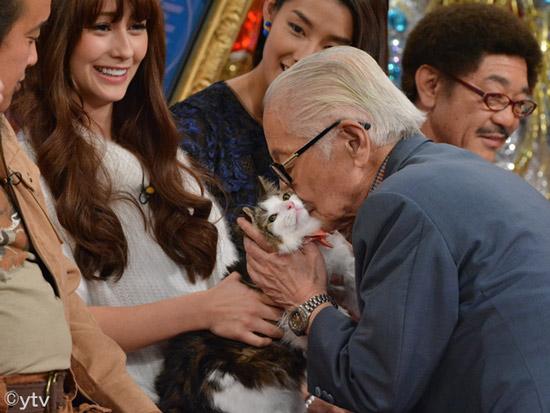 「子猫物語」でも有名なムツゴロウ王国は現在どうなっているのか。