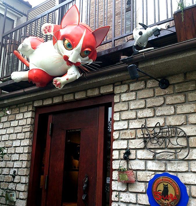 入り口で巨大猫がお出迎え!薬膳スープカレーの店「Shania シャナイア」