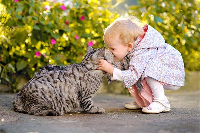 新生活は猫とともに②猫と暮らすためのポイント