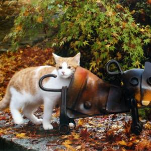 【GWに行きたい♡】ねこ好きにはたまらない猫の美術館が千葉にあった!