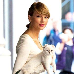 【流行りはテイラー持ち!!】テイラー・スウィフトの猫ちゃんの持ち方がスタイリッシュで真似したい♡