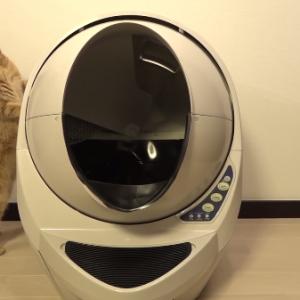 これはいい!!自動猫トイレ!!!これさえあればお掃除楽チン・・・(^^♪
