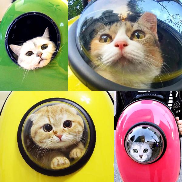 【ニャンコが宇宙に?!】猫が「宇宙船に乗っているように見える窓付きキャリーバッグ」が流行りそう♪