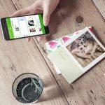 【フォトブックがワンコインで!!】世界で一つだけの愛猫のフォトブックを作っちゃお♪