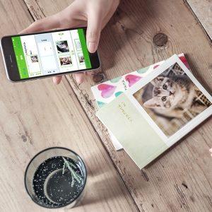 【フォトブックがワンコインで!!】世界で一つだけの愛猫写真集を作っちゃお♪