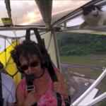 空を自由に飛びたいニャ!?飛行機の翼から突然猫が現れてびっくり!