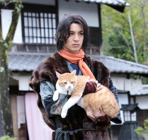 【侍の次は忍者だニャ】「猫侍」スタッフが手掛ける「猫忍」が楽しみでしょうがない♪