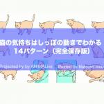 飼い主さん必見♡しっぽで分かる猫の気持ち14選♪