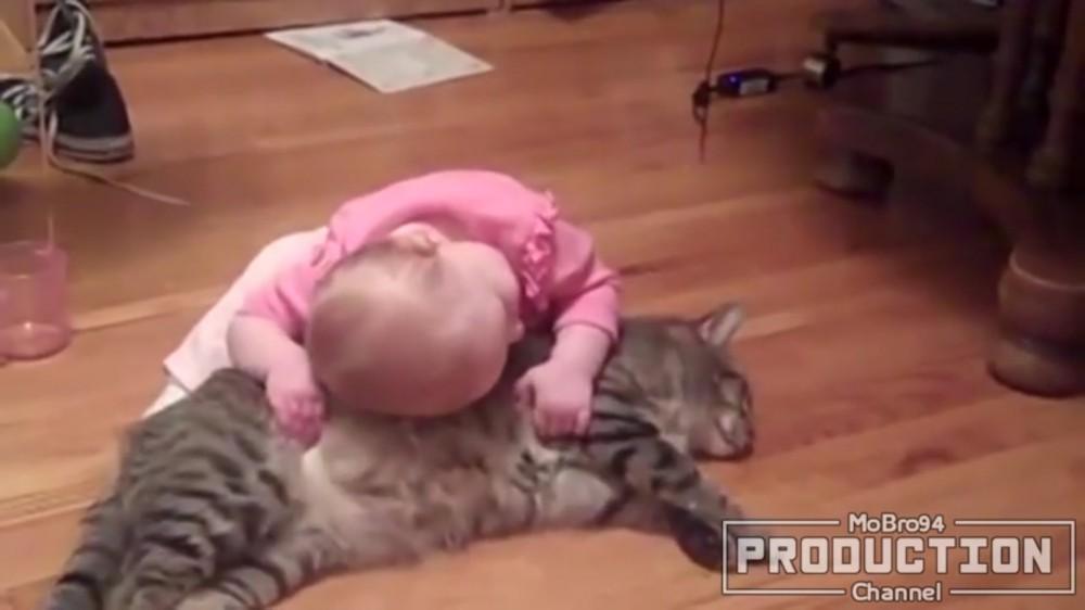猫と赤ちゃんのほのぼのした友情♡可愛すぎる最強タッグ…!