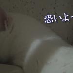 ゴロゴロ、ピッシャーン!!雷の音にどーしよどーしよ(汗)戸惑う猫ちゃん!!