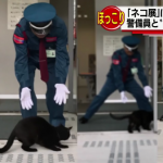 「本物なのに入れないにゃ〜?」猫の展覧会に本物の猫ちゃんのお客さん!?警備員さんとのやりとりが可愛い♪