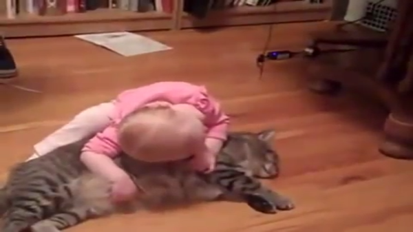 「猫ちゃん枕~♡」猫を枕にしている赤ちゃんがうらやましい・・・!