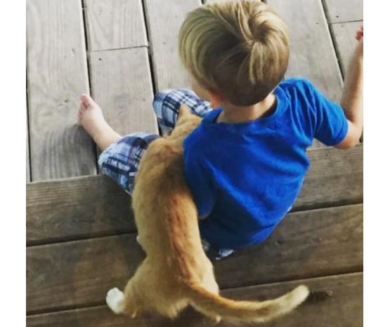 お腹ペコペコで家のポーチにたどりついた子猫は、4歳の息子を親友に選びました。