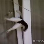 【あちゃ~】窓の隙間にハマって抜けられなくなくなっちゃった猫ちゃん!救世主あらわる!?