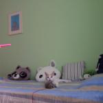 「壊しちゃった…」おもちゃが壊れて落ち込んじゃった猫ちゃん!え?壊れたのってそこ?