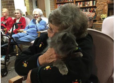 共に癒し合うふれあいの時間『猫たちが来てくれる』高齢者を訪れる猫