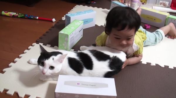 赤ちゃんに猫枕にされても我慢する猫ちゃんと猫ちゃん大好きな赤ちゃんが微笑ましい♪