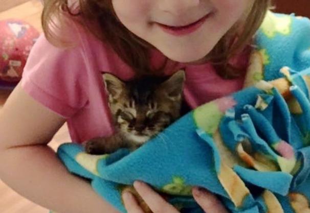 5歳の娘が決心しました。『ママがいないのね。いいわ!わたしが子猫のママになる!』