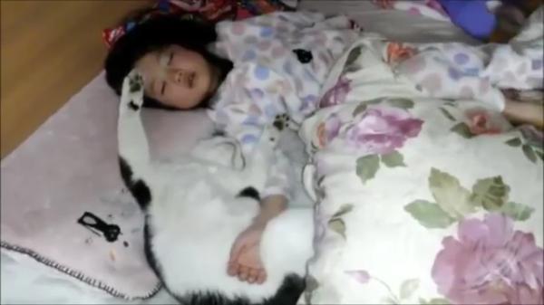 猫ちゃんvs娘ちゃん!!寝相悪いコンビが一緒に寝るとある意味芸術w