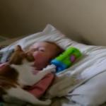 猫「ねぇねぇ赤ちゃん♡」赤ちゃん「…猫ちゃん重い~!」赤ちゃんにくっつきたい猫ちゃんw