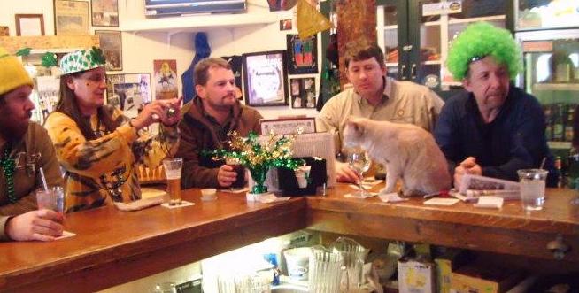 『対立候補を猫にしよう』面白半分で選んだ市長だったけれど20年間市長を務めて町を元気にした猫