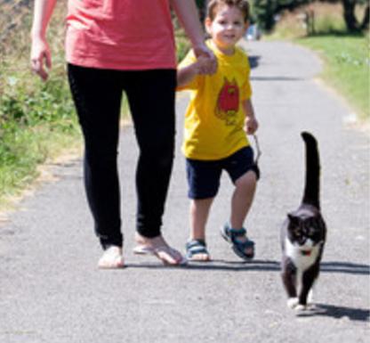 不安障害を抱える男の子の送り迎えをする猫『だって私は彼が生まれる前から知っているわ』
