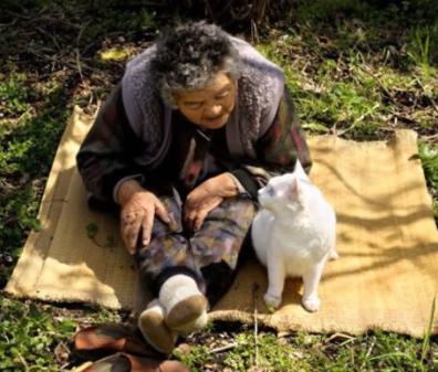 いつでも一緒♪生まれた時から耳が不自由なひとりぼっちになった子猫を飼うことにしたおばあちゃん。子猫とおばあちゃんの素敵な日常に感動です