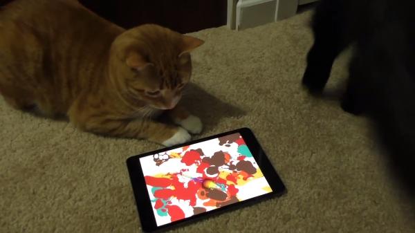 これは優秀アプリでは?!ネズミを追いかける猫専用アプリで素晴らしいアートが完成!!