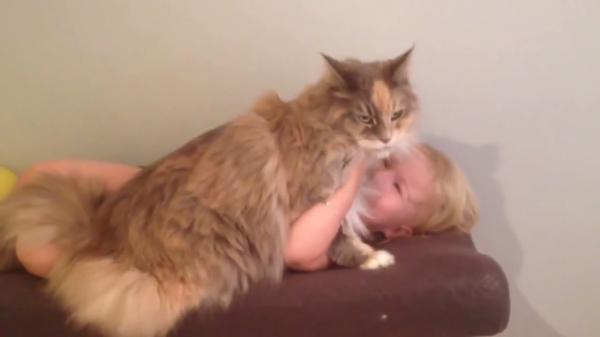 赤ちゃんをそっと見守る優しい猫ちゃん♪雑に触られても嫌がらない大人な対応が素敵!(笑)