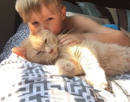 『あなたはどんなペットでも飼うことができるのよ』ママにそう言われた男の子は10歳のシニア猫を選びました。