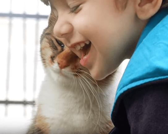 散歩が日課の2歳の息子が友達になった猫。息子も猫も毎日楽しみにしている大切な時間