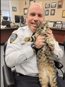 街中で突然警察官の腕に飛び込んだ子猫!!警察官を虜にしてしまった子猫は警察署ごと虜にしてしまいました!