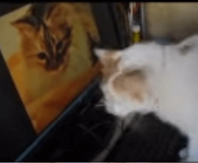 愛猫の大きな写真を飾ったら、もう1匹の愛猫が彼女の予想をはるかに超える行動に・・・