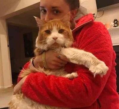 大きすぎるからという理由で捨てられた猫。でもその容姿が素敵という心優しい家族との運命の出会いが待っていた!