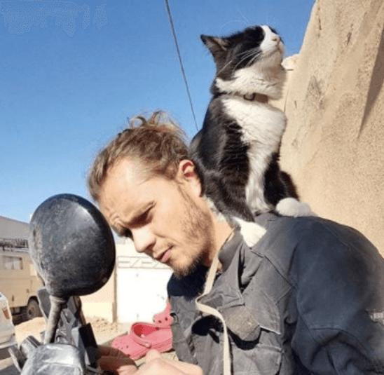 後悔のない人生を・・・ドイツからバイクで旅をする彼と旅先で出会った母猫を事故で亡くしたひとりぼっちの子猫