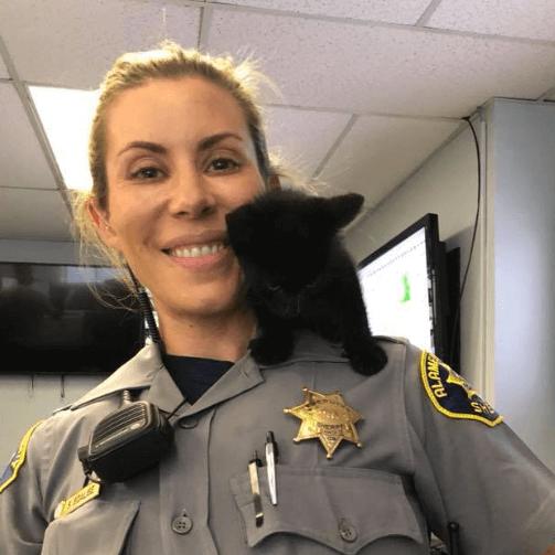 突然現れ、さまよっていた小さな黒猫を迎え入れた保安官事務所。我が物顔で寛ぐ子猫にみんなが心を奪われて・・・