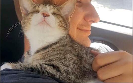 アフリカの路上で独り彷徨っていた生まれつき盲目の子猫。保護されるととても人懐っこい性格で周りの人を幸せな気持ちにさせる♡
