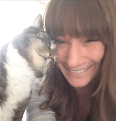 猛勉強のストレスに苦しむ猫が苦手な歯科大生と彼女がキャットシッターを引き受けた13歳の猫