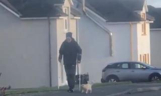 松葉杖をついてリハビリの散歩をする父は私たちの猫をボディガードと呼ぶ