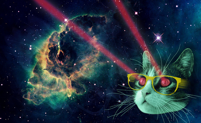 スペースキャットってご存知ですか!?不思議で可愛い『猫×宇宙』の世界