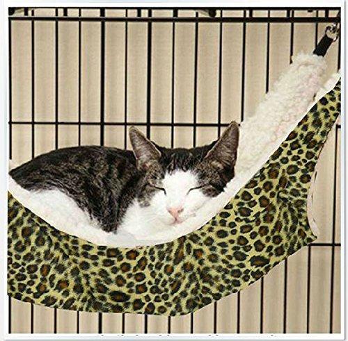 ハンモック猫