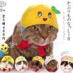 【猫ちゃんのためのガチャ第3弾】かぶりものなっしーになった猫ちゃんが可愛い♪