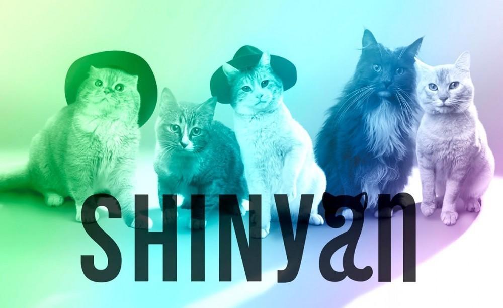 モフモフの猫5匹組音楽ユニット「SHINyan」の猫ホイホイMVが公開!!って何?